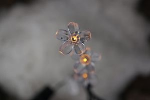 SNOW FLOWER LIGHT by CHRISwillar