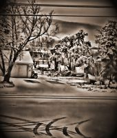 First Snow 2011 by skip2000