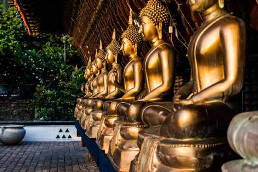 Statues of Lord Buddha by exploreSLK