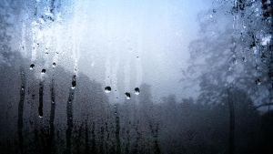 rain_21/9 by in3xplicit