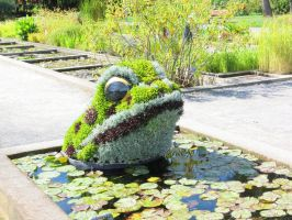 Mosaic Living Sculpture - Toad by Kitteh-Pawz