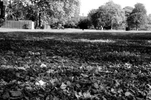 Platt Park 2. Monochrome. by johnwaymont