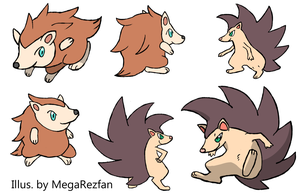 Hedgy | Dashog Concept Sheet by MegaRezfan