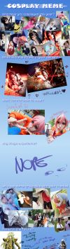 2012 Cosplay Meme by Rociell