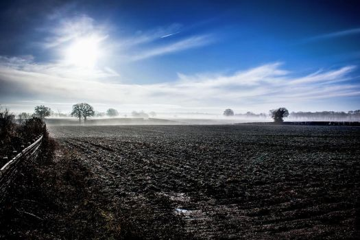 The Cold White Light by Daniel-Wales-Images