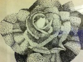 A Dot Rose by Dmims