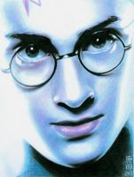 HARRY POTTER 2 by carmenharada