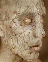 Cracked by artistry-and-imagery