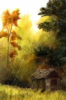 A shed in the fall by nibs89