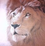 Art Project: FOR ASLAN by Aesc-leah