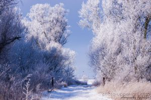 Winterblau by FeliDae84