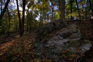 Rock by Staticpictures