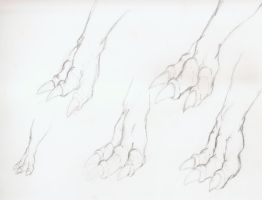 Yet another dragon claw study by JulioBN