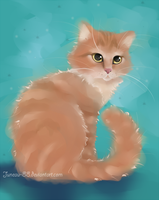 Ginger kitten by Juneau-88
