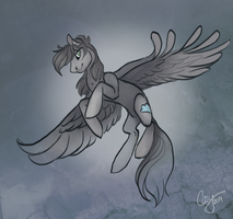 Experimental Comission 6 by CasyNuf