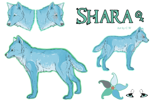 reference: shara araceli by CanisterWhoops