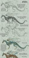 How To Draw Your Dragon 4 by LittleFireDragon