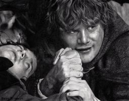Frodo and Sam by WillowDesign
