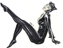 Catwoman by dtor91