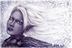 Snow Drow by Isbjorg