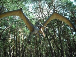 Pterosaur 3 by omg-stock
