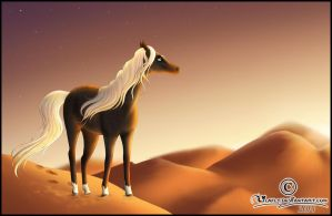 - desert view - by Lilafly