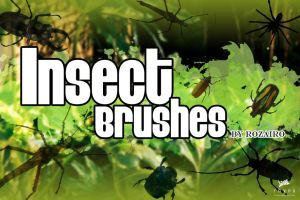 Insect Brushes by Rozairo