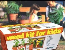 Weed kit by TheFunnyAmerican