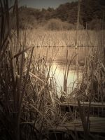 THE RESERVE ( SEPIA / VIGNETTE ) by ANDYBURGESS