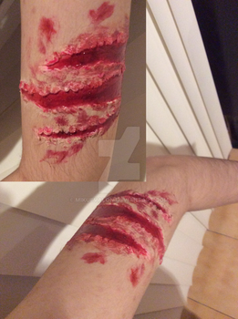 SFX\Effect Makeup: Animal or creature scratch by dianita98