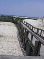 Walkway on Cumberland Island by Hazlenuttt2006