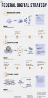 Federal Digital Strategy Infographic by onyxlovechild