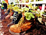 Sprouting Boots 2 by TemariAtaje