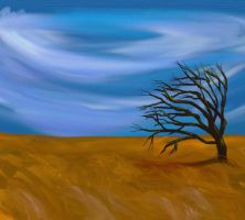 Wind in the Mesquite by katiejo911