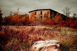 Abandoned by Malleni