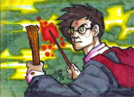 Potter Charity Sketch Card by y2jenn
