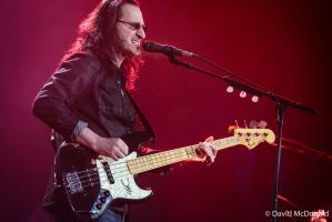 Rush: Geddy Lee in Toronto by basseca