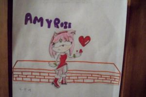 amy rose and heartz by sonamy33