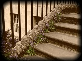 Stairway to Heaven... by ansdesign