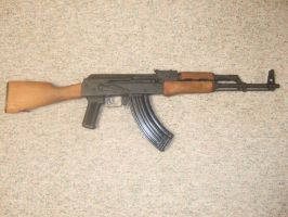 Century WASR-10 AK Rifle Pic 1 by stopsigndrawer81
