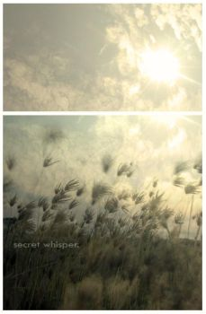 secret whisper, the wishes. by dhey
