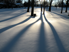 Snow Shadows by Leonca