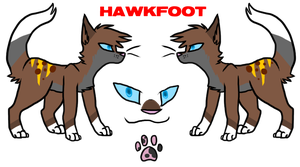 Hawkfoot official ref by Cattypasta