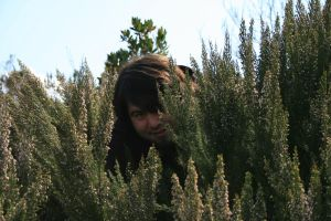 peaking through the bushes by snaplilly