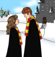 Hermione and Ron by Luna-June