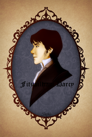 Who is Your Mr Darcy by Slypht