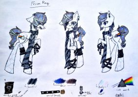 Prism Ray reference sheet. by Milliemewz