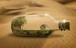 Life in the desert by mannoel