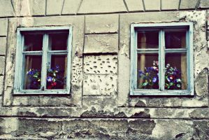 Windows by Antoniettaa