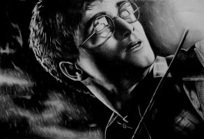 harry potter by gzertkl